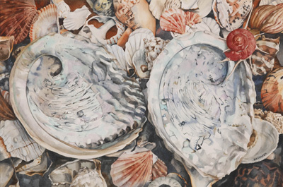 Bronwen Schalkwyk's SEA HARVEST - 515mm x 340mm  watercolour by Bronwen Schalkwyk