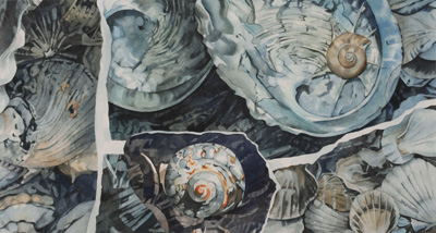 Bronwen Schalkwyk's TIDAL TREASURES - 555mm x 295mm watercolour by Bronwen Schalkwyk